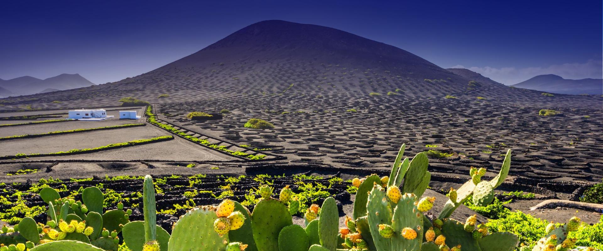 Ruta en La Geria Lanzarote